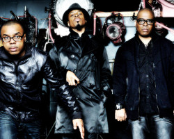 NEWS: Mint Condition Haven't Flopped